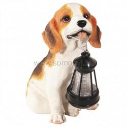 Napelemes lámpa, kutya