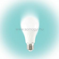 Beépített fényerő-szabályozós led fényforrás